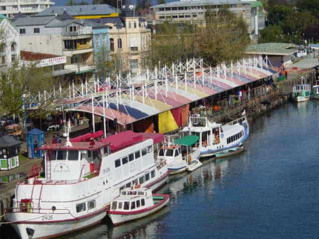 family activities in valdivia family adventure trips