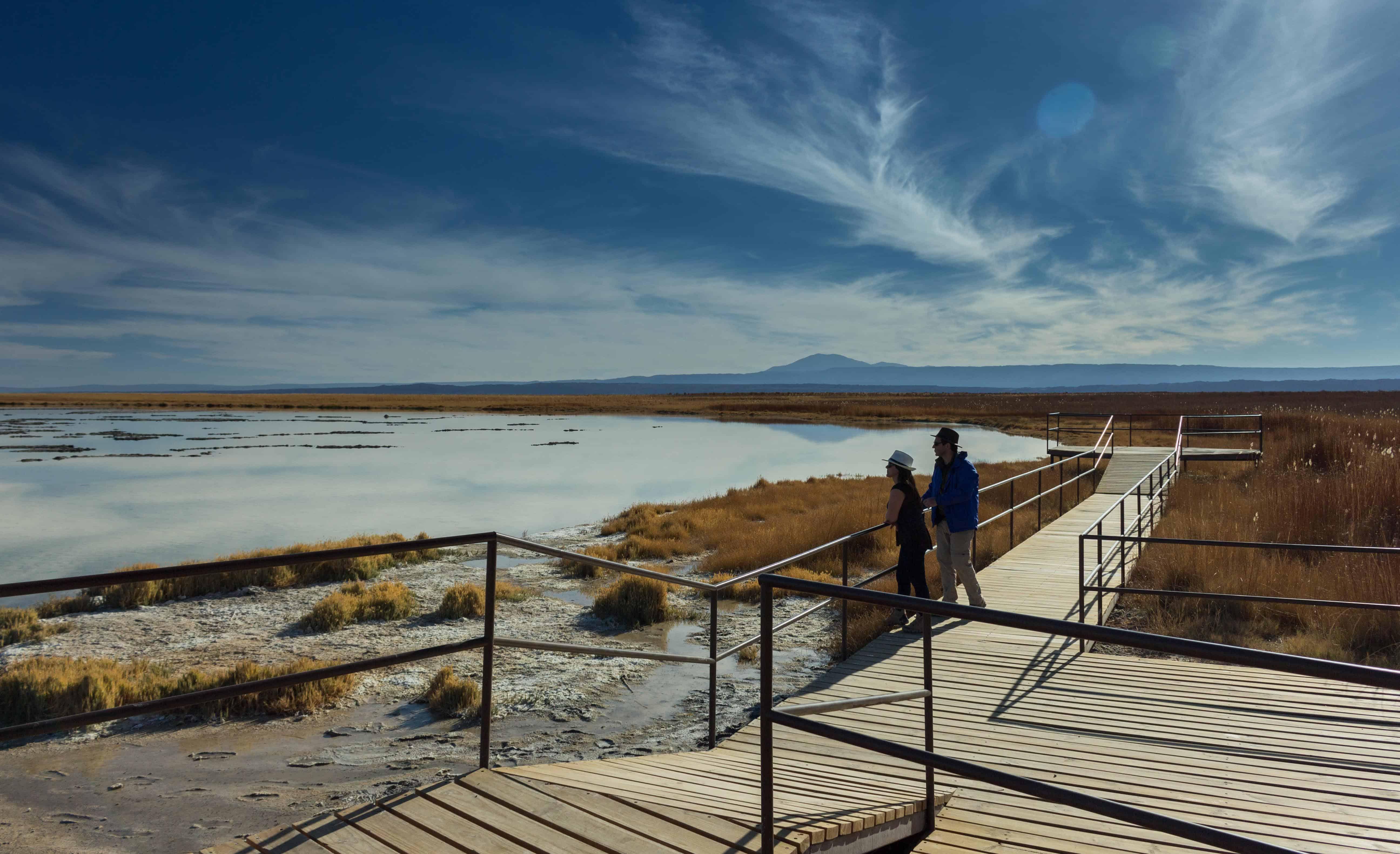 Laguna cejar Atacama Desert