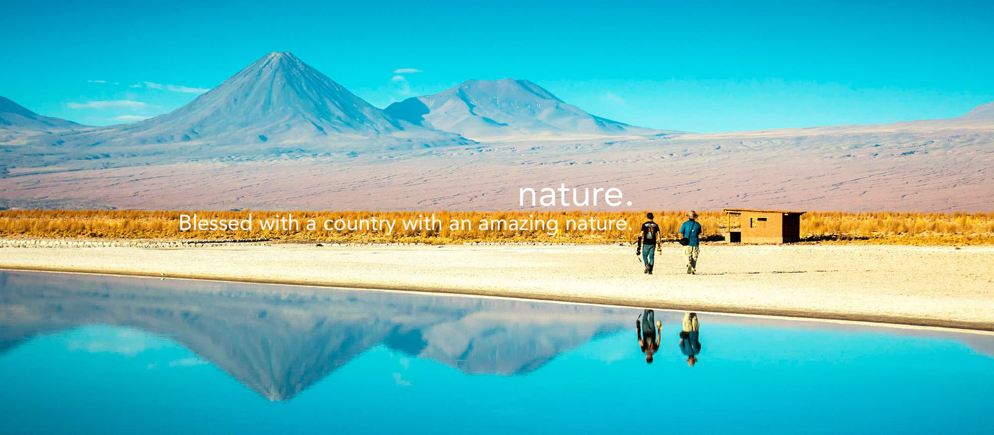 Nature Travel in Chile With Amity Tours
