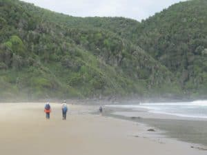 Epic Pacific Coast Trek in Chile