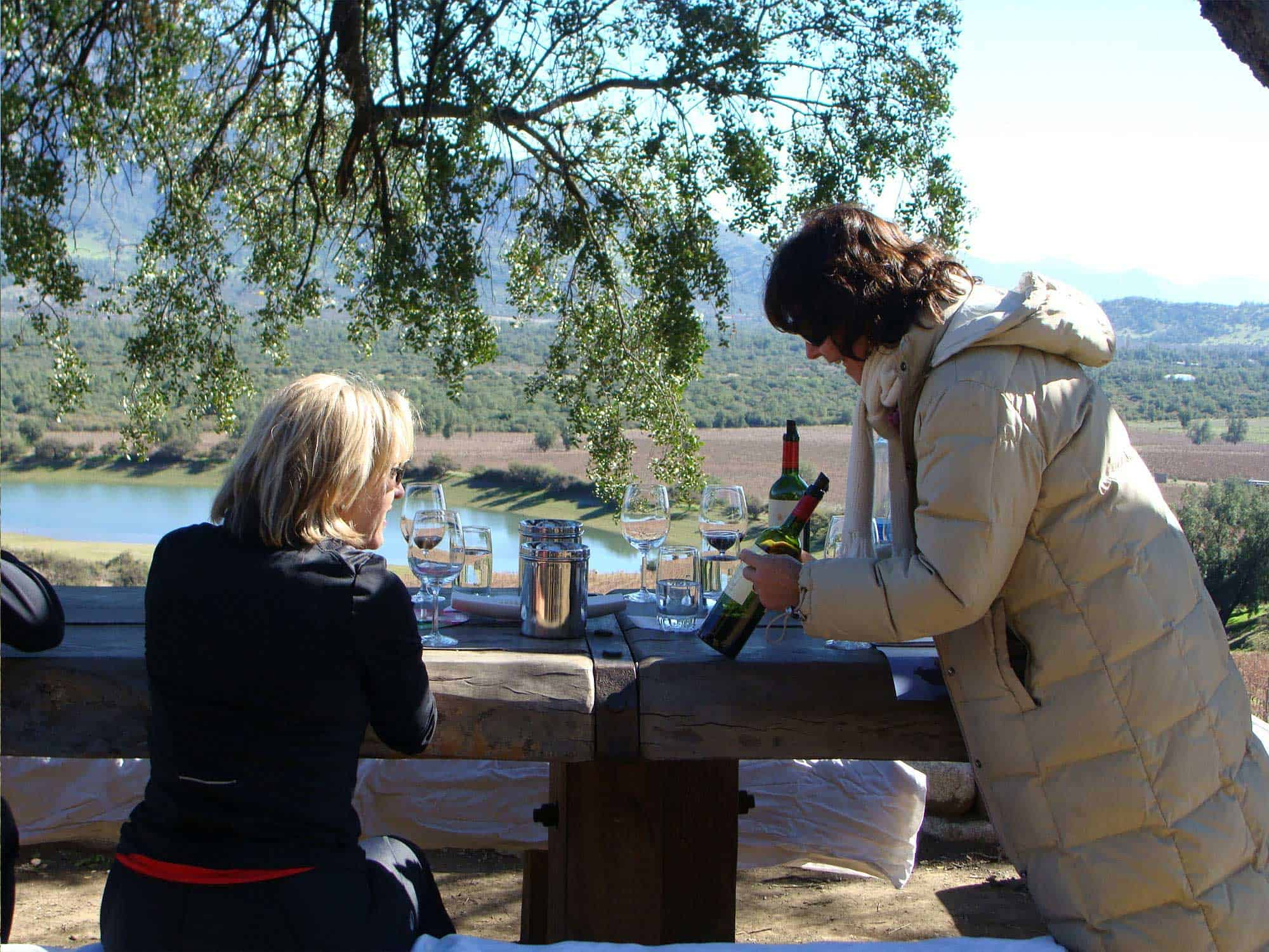 wine tour chile