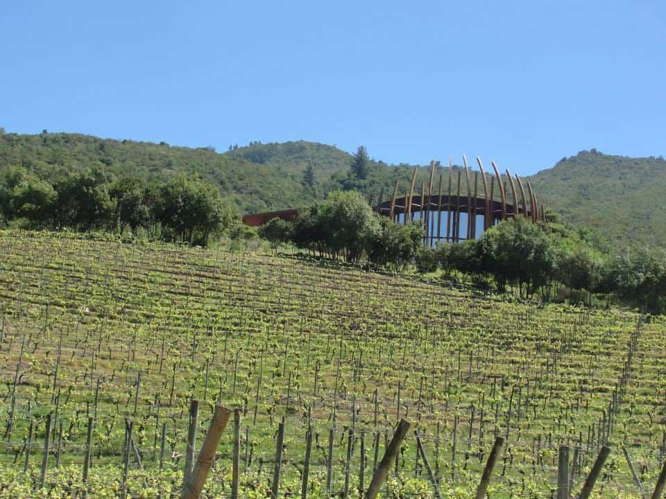colchagua valley chile