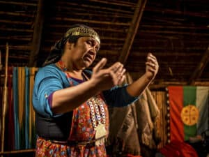 mapuche people of the land