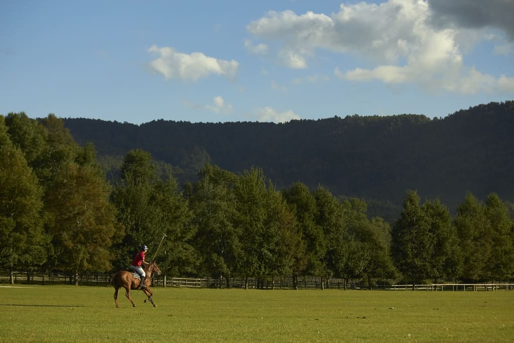 polo camp chile