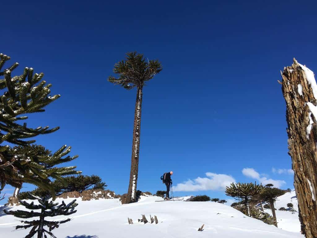 Ski Argentina - Caviahue