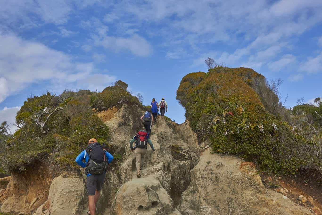 mapu lahual trekking