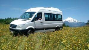 Van Sprinter Volcano Flowers