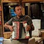 Musician Accordeon