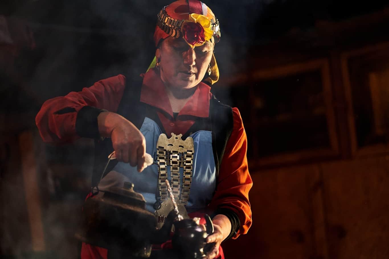 mapuche culture chile