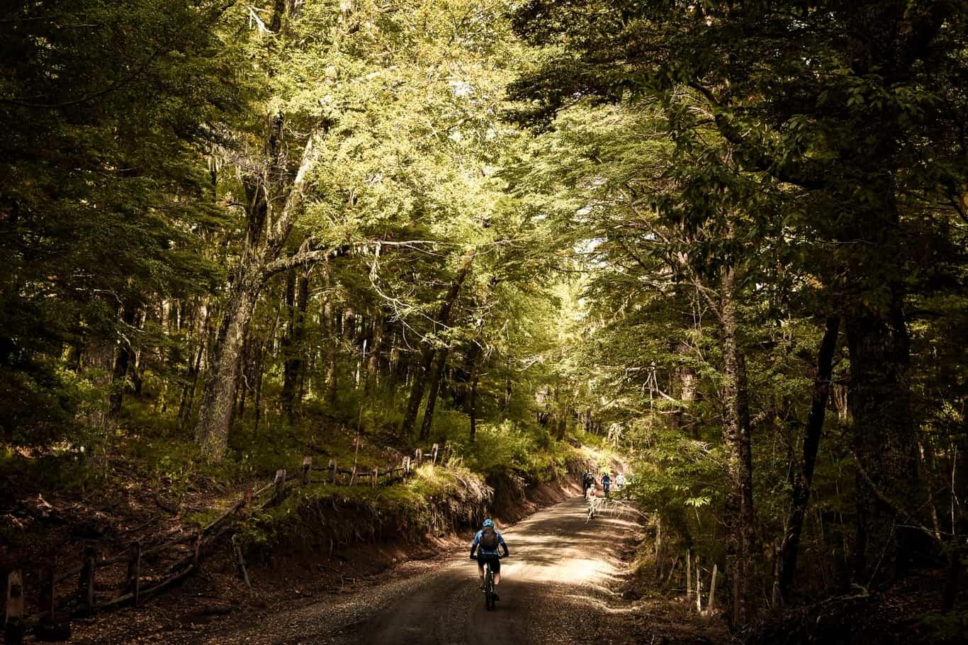 Día 1 El Cerdúo Bike Park