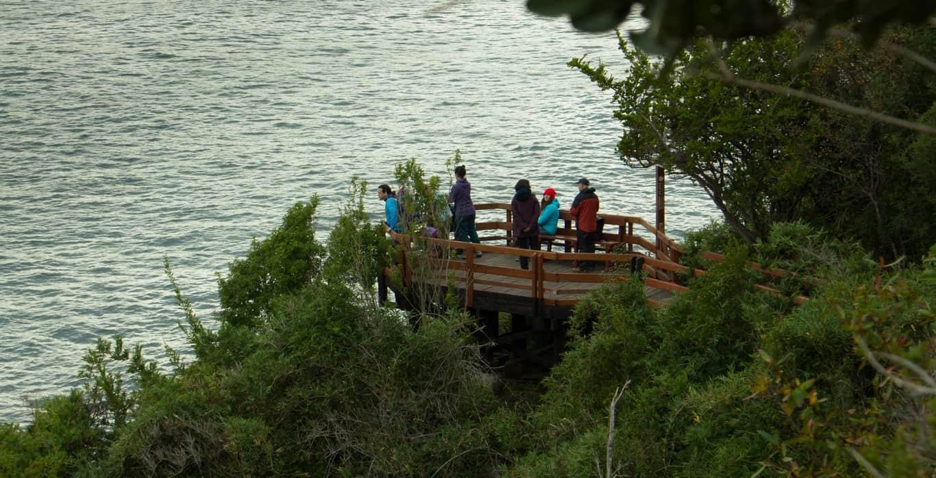 Día 2 - Reserva Costera Valdiviana