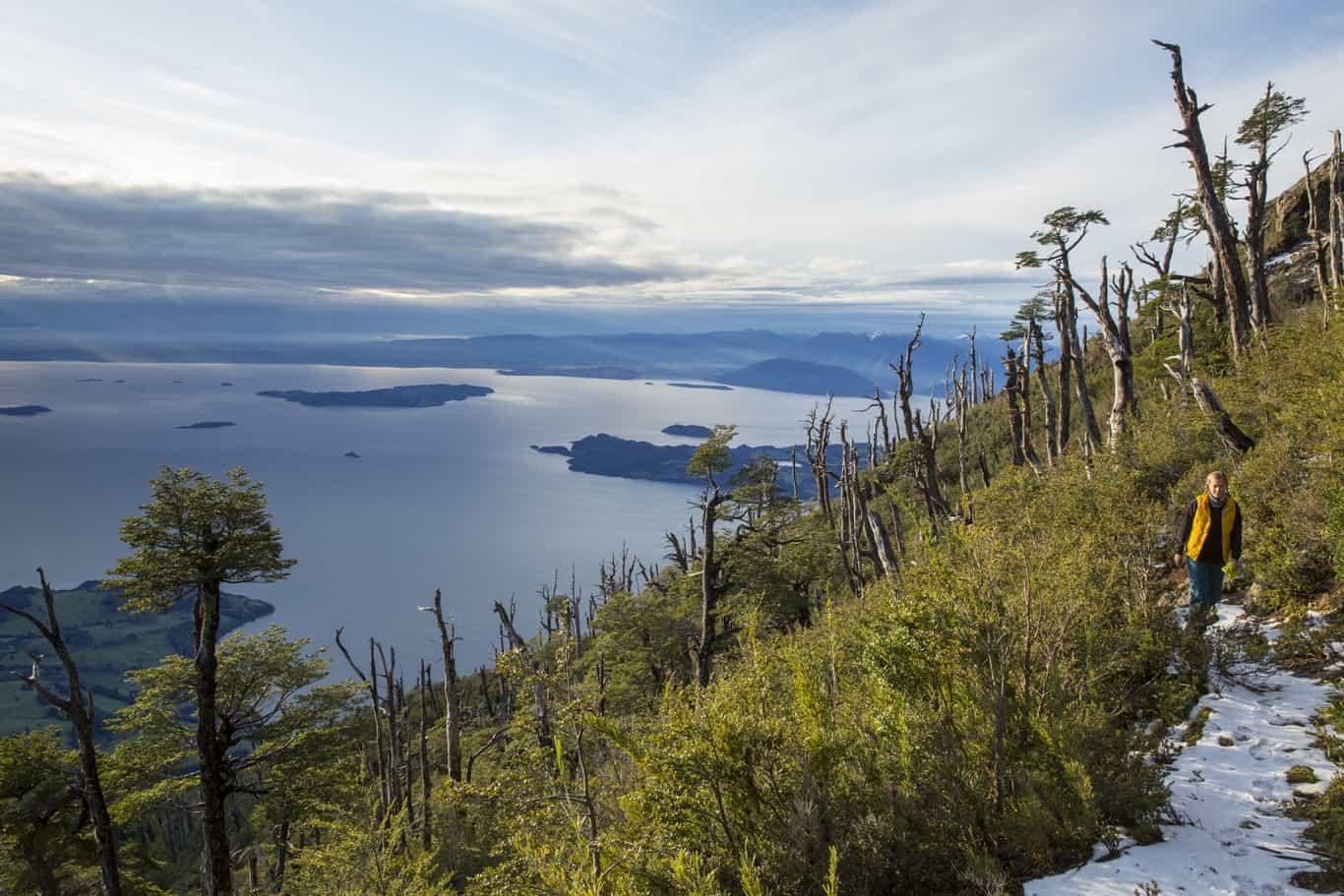 Día 3 - Parque Futangue - Lago Ranco