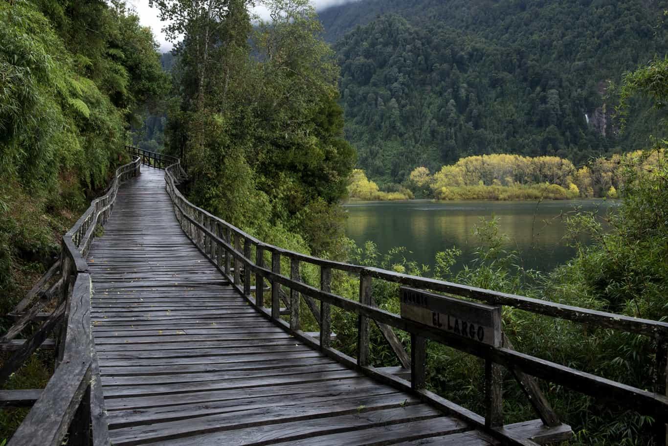 Día 4 - Sendero Laguna Pitreño