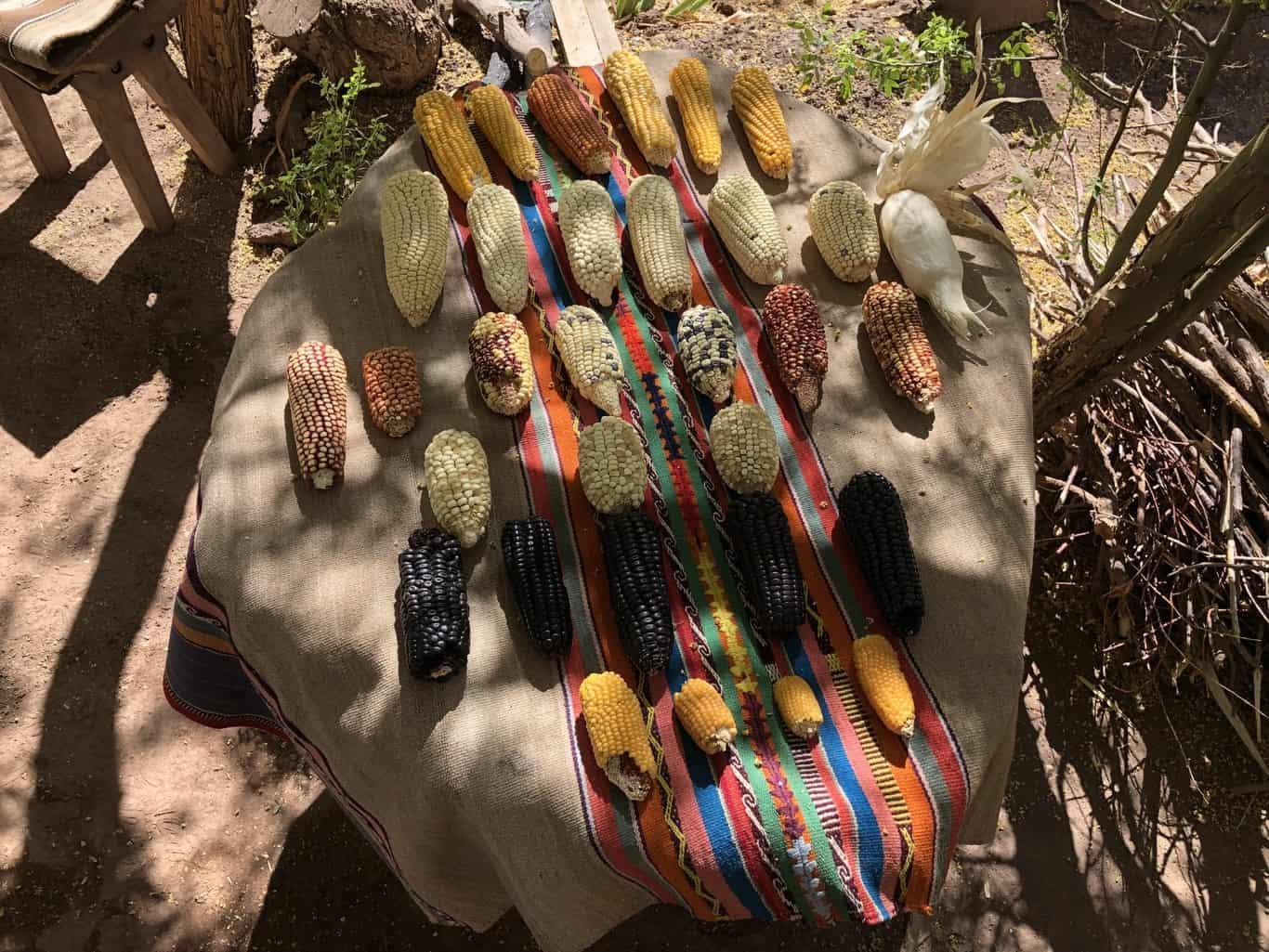 Day 1 - Los Ayllus ride - Encounter with Likan Antai Indigenous community