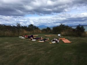 Meditation on yoga mats on a green field