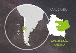 araucania andina chile