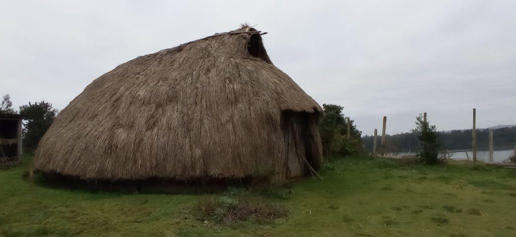 ruka lafkenche mapuche araucania