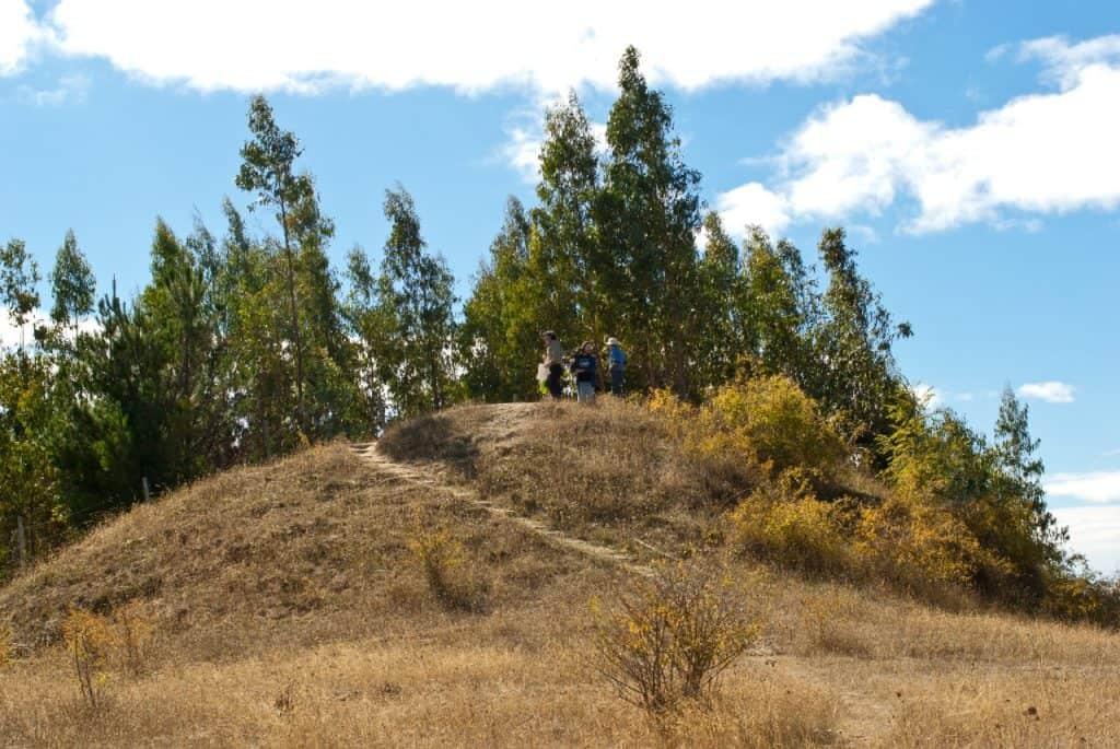 Kuel Mapuche Araucania